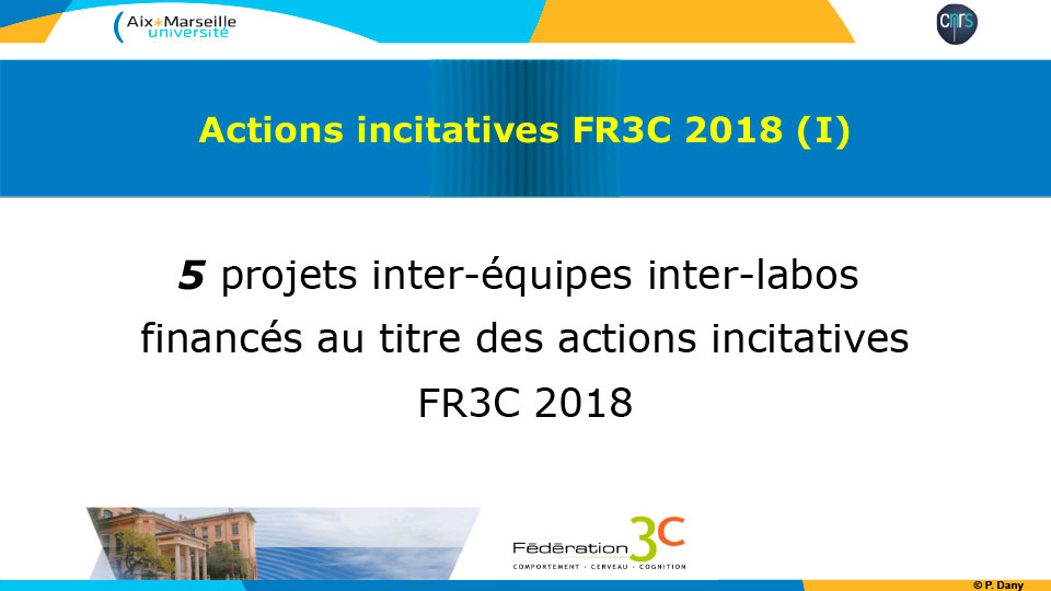 Actions incitatives FR3C 2018 (I)